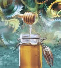 Milch und Honig Honigtopf_startseite