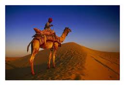 http://t1.gstatic.com/images?q=tbn:1YVl5aw9mk2HEM:http://imagecache2.allposters.com/images/pic/PTGPOD/483126~Man-Atop-Camel-Thar-Desert-Rajasthan-India-Posters.jpg&t=1