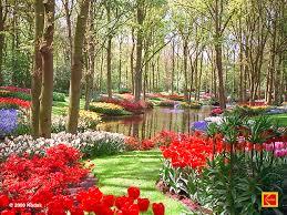 عکس باغ گل - گلستان