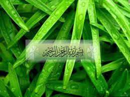اروع الصور الاسلامية @ من عمرالسمهودى Islamic-003