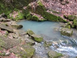 برکه آب و نهر در بهار