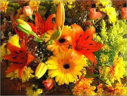bouquets-de-fleurs-2