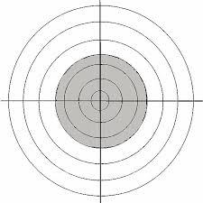 http://t1.gstatic.com/images?q=tbn:5_B5EJLrC6IGqM:http://www.reedstargetshootingclub.co.uk/pages/images/target.jpg