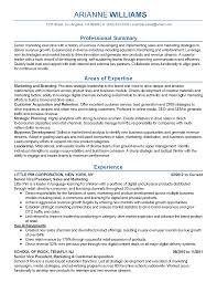 Resume Templates  Senior Marketing Executive