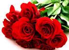 wow: ดอกไม้สื่อรัก