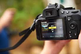Digital Camera Tips For Close-Up and Macro Mode Shots