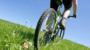 Top   Bike Shops in Mississauga   insauga com insauga com