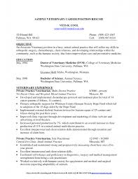 Sample Attorney Resume Solo Practitioner by Private Practice Resume Free Resume Example And Writing Download