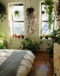 Urban Living Room Decor Wonderful Bedroom Plants 61 Home Decorating Plan With Bedroom