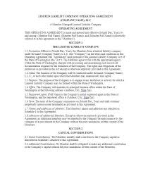 30 professional llc operating agreement templates template lab