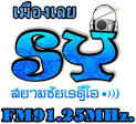 sy-logo.jpg