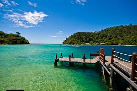 with an amazing assortment of lush landscapes tropical scenery