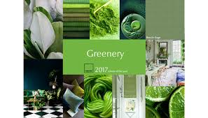 Pantone 2017 by Colours Of The Year 2017 Pantone And Dulux Parker Knoll