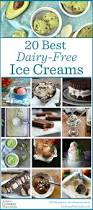 20 best dairy free ice cream recipes