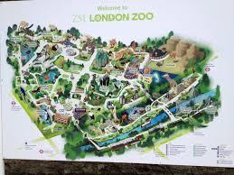 Phoenix Zoo Map by Image Gallery London Zoo Map