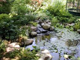Fall Landscaping Ideas by Garden Design Garden Design With Alder Landscaping Water