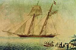 Slave Trade Essay Amistad  Seeking Freedom in Connecticut   A