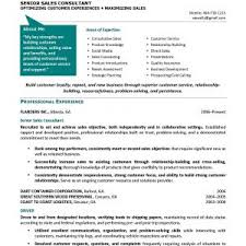 Free Resume  Free Professional Resume Writing Services Free Professional Resume Writing Service  federal resume Resume Template