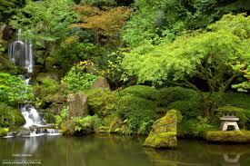 Little Giant Water Pumps 100 Water Garden Falls Waterfalls Little Giant Waterfalls