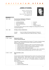 replace the prepopulated content  resume template word          model resume template