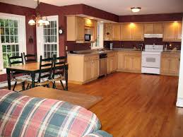Good Colors For Kitchens With Oak Cabinets Interior Design Ideas - Good color for kitchen cabinets