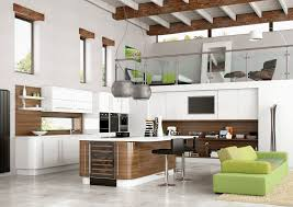 cool new style kitchen design in pakistan 1950