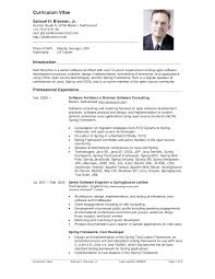 View Resume Samples by Neat Design American Resume 5 View 300 Resume Examples By