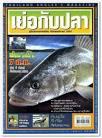 เย่อกับปลา ประจำเดือนพฤศจิกายน 2552 จากบล็อก โอเคเนชั่น oknation.net