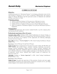 Resume Cv Template  functional resume templates functional cv     Professional CV Writing Services
