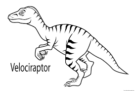 printable velociraptor dinosaur coloring book pages for kidsfree