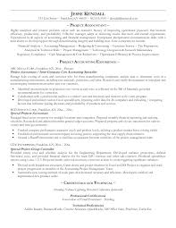 Accounting Assistant Resume Examples   computer skills resume sample