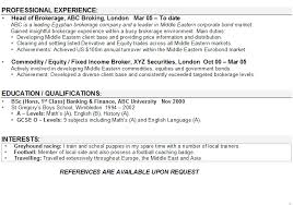 Professional Resume Objective  examples of resumes   professional     Sample Resume  Computer Science Resume Career Objective