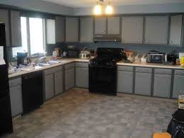 Best Kitchen Cabinet Paint Colors by Kitchen Cabinet Paint Colors Pictures Ideas From Gray Cabinets