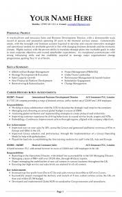 First Job Resume Example  Resume Writing with no Experience