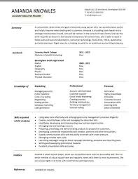 Sales Executive CV template example  marketing executive  revenue     Entry level account executive resume