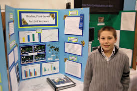Science Fair Research Paper Tooth Decay     FAMU Online