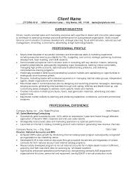 good objective for sales resume   Template Template
