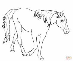 friesian horse coloring page free printable coloring pages