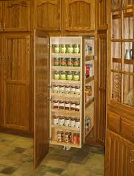 Kitchen Cabinets With Pull Out Shelves by Organizational U0026 Decorative Accessories Galleries Right Margin