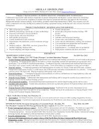 Sample Project Management Resume  resume template project     happytom co