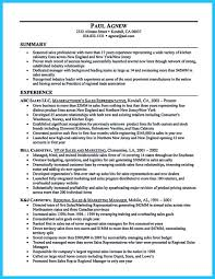 sales director resume sample motorcycle sales resume automotive sales manager resume