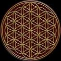 Flower of Life - 3D and CG & Abstract Background Wallpapers on ... abstract.desktopnexus.com