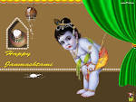 Wallpapers Backgrounds - Festivals Cute Child Lord Krishna Janmashtami Wallpapers yah