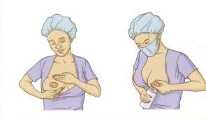 ORDENHA MANUAL - POP Procedimentos Operacionais Padrão Enfermagem
