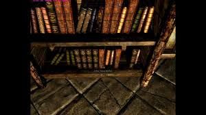Container Store Bookshelves Skyrim Bug Bookshelf Container Inventory Loss Youtube