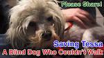 maxresdefault.jpg sbynews.blogspot.com