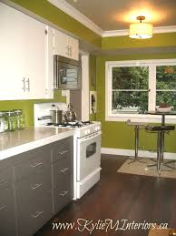 How To Paint Kitchen Cabinets Video Best 20 Green Kitchen Cabinets Ideas On Pinterest Green Kitchen