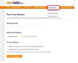 Examples For A Resume by Resume Name Examples Berathen Com