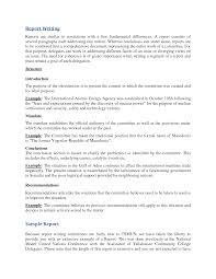 report writer resume Eurotermika