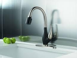100 one touch kitchen faucet granite countertop leak under